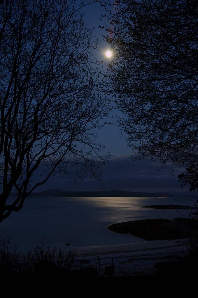 Stunning Full Moon Over Water Art   Fine Art America   Full Moon Reflecting Off Water